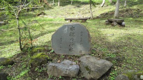 妙高高原 笹ヶ峰一周歩道