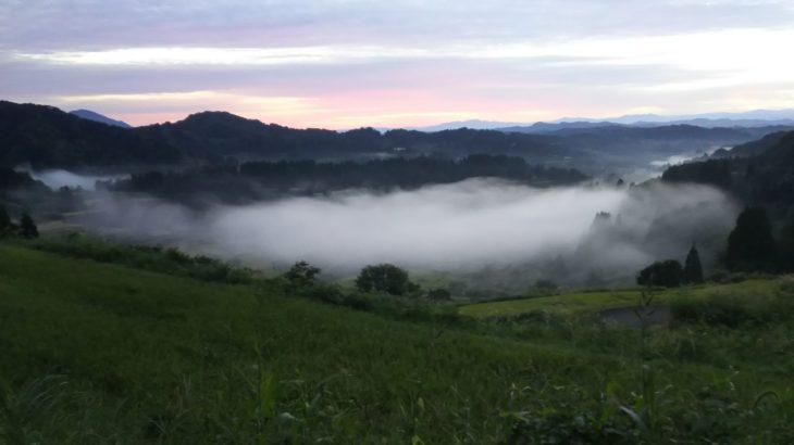 「雲海出現NAVI」で週末探検を楽しもう!