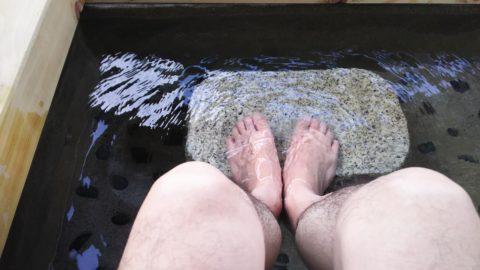 下呂温泉 鷺の足湯