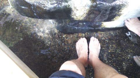 城崎温泉 一の湯足湯