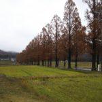 日本最大の自動車整備士専門求人・派遣サイト「レソリューション」