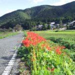 「BIWA-TEKU(ビワテク)」で「長浜市 浅井下草野地域巡りコース」を歩いてみた