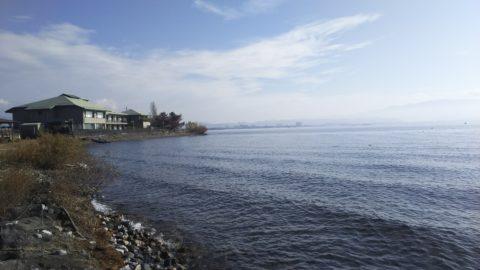 琵琶湖「湖岸緑地 姉川河口」