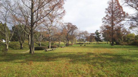 琵琶湖「湖岸緑地 川道-1」