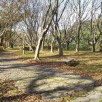 琵琶湖畔のデイキャンプ・バーベキューにオススメの無料スポット「湖岸緑地 川道-2」