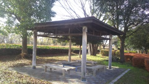 琵琶湖「湖岸緑地 長浜-2」