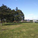 琵琶湖畔のデイキャンプ・休憩にオススメの無料スポット「湖岸緑地 田村-1」
