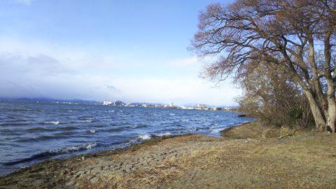 琵琶湖「湖岸緑地 田村-2」