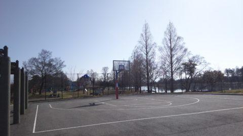 奥びわスポーツの森 バスケットコート