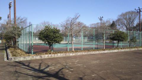 奥びわスポーツの森 テニスコート