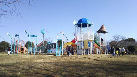奥びわスポーツの森 遊具広場