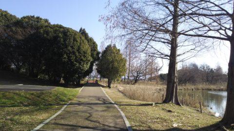 奥びわスポーツの森 遊歩道