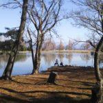 「BIWA-TEKU(ビワテク)」で「長浜市 奥びわスポーツの森コース」を歩いてみた