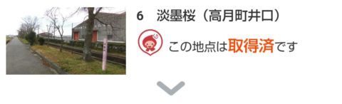 「BIWA-TEKU(ビワテク)」淡墨桜(高月町井口)