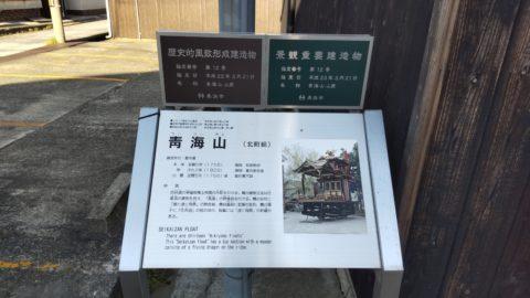 靑海山(北町組)