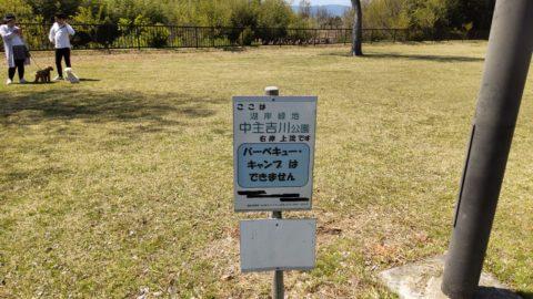 琵琶湖「湖岸緑地 中主吉川」