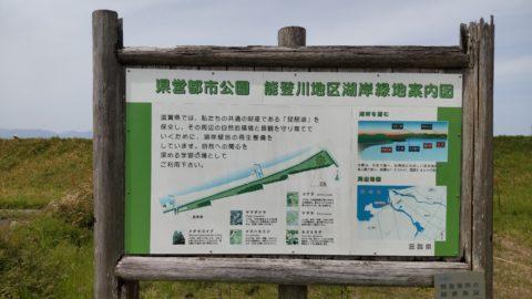 琵琶湖「湖岸緑地 栗見新田」