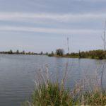 琵琶湖畔のデイキャンプ・バーベキューにオススメの無料スポット「湖岸緑地 曽根沼」