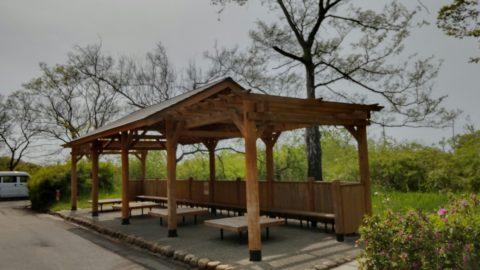 琵琶湖「湖岸緑地 曽根沼」