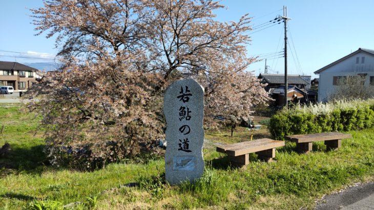 「BIWA-TEKU(ビワテク)」で「長浜市 「びわ」南浜地域めぐりコース」を歩いてみた