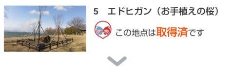 「BIWA-TEKU(ビワテク)」エドヒガン(お手植えの桜)