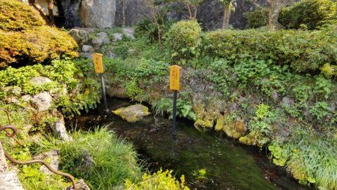 居醒の清水と蟹石