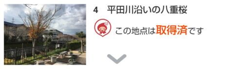 「BIWA-TEKU(ビワテク)」平田川沿いの八重桜